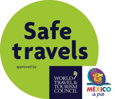 Safe Travels in Mexico with Mexico a Pie Walking Tours
