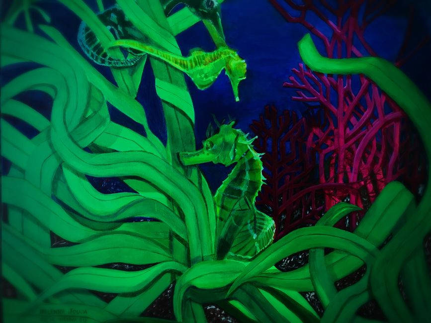 Aquarium prisoners:   THE SEAHORSES    If you had been given a chance to be a fish, what kind of fis