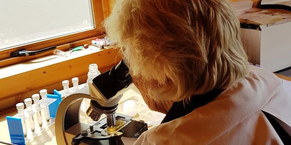Our laboratory carefully tests horse poo samples for the presence of worm eggs