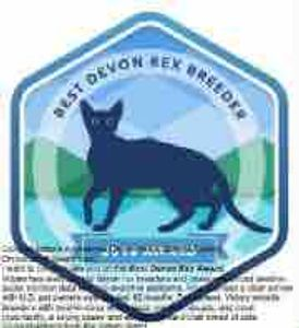 Best Devon Rex cat breeder