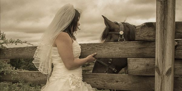 Bride out in country setting on fence with her horse.