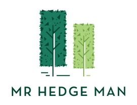 Mr Hedge Man