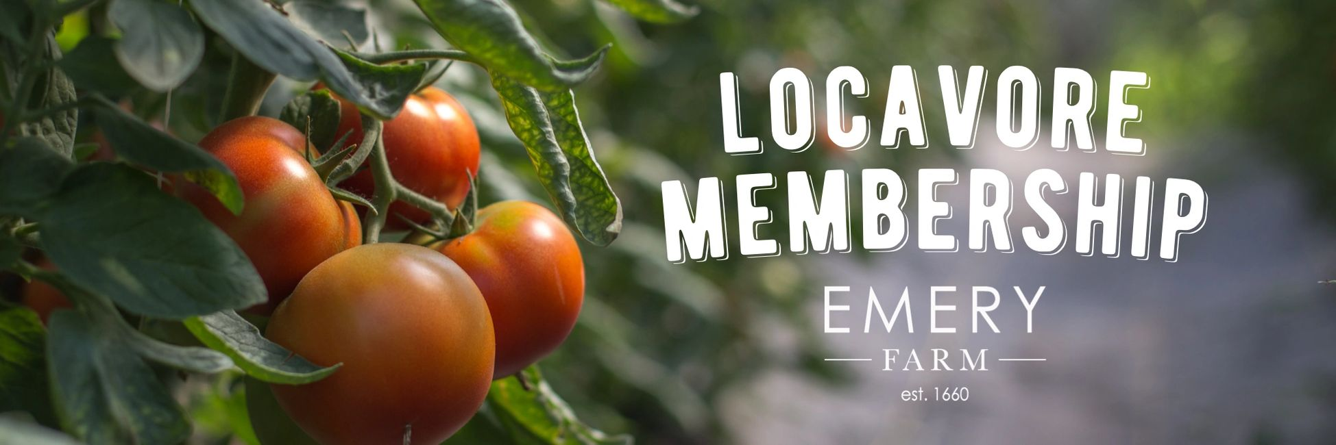Emery Farm CSA with twist - Join our Locavore Membership
