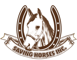 Saving Horses, Inc.
