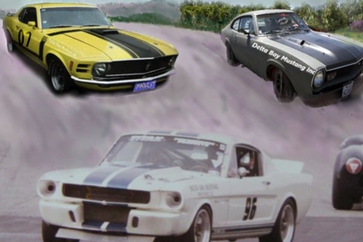 Mustang Used Parts >> Deltabay Mustang Maverick Auto Parts Autozone Used Auto Parts