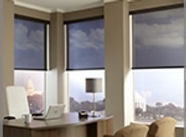 Lutron Contract Roller Shades