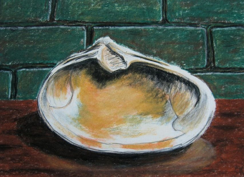 Clamshell, Pastel