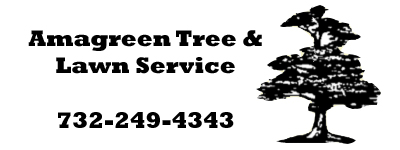 Amagreen Tree and Lawn Service