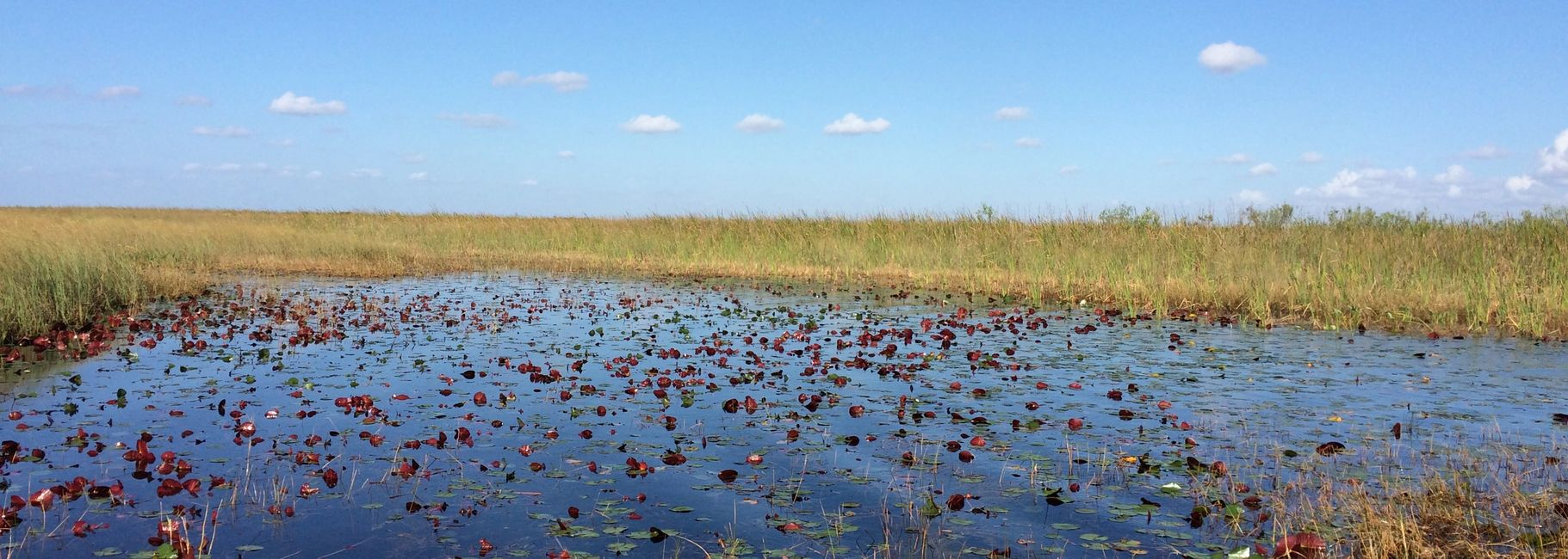 JetsetPrivate Air Day Trips to the Florida Everglades. Wilderness Experiences. Charter flights