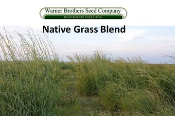 Native Grass Blends