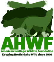 American Heritage Wildilfe Foundation inc.
