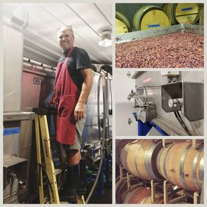 in the cellar with the winemaker