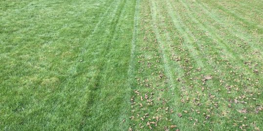 Left not aerated, Right aerated after 1 pass.