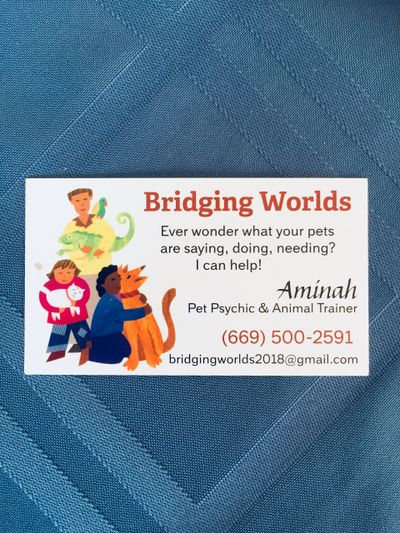 All about Bridging Worlds contact information
