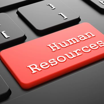 human resources employment screening background checks criminal records check