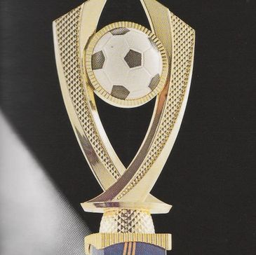 Gold look and timber football sports trophy