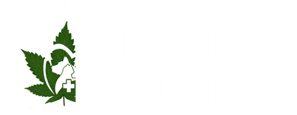 Mojo Pet Supplements