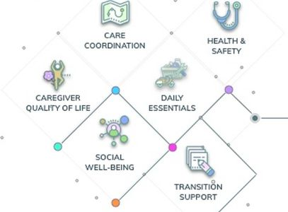 CareNexis recommendations across six dimensions of care.