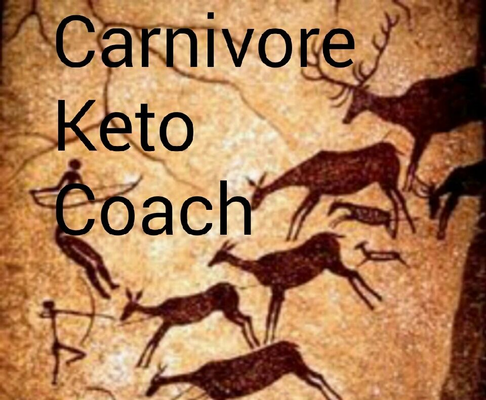 carnivore carnivorediet keto ketodiet diet weightloss health