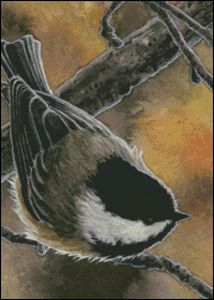 Autumn Chickadee Original Artwork © Ann Marsh