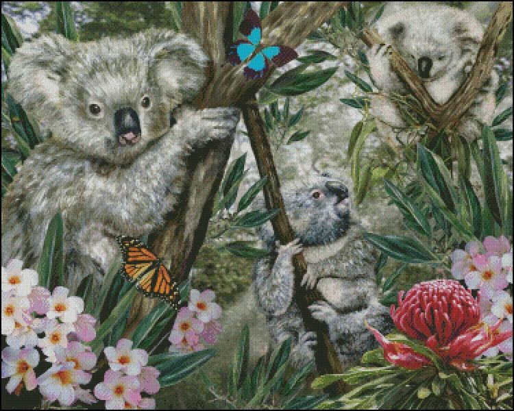 Koalas counted cross stitch pattern. Original image copyright Lori Schory