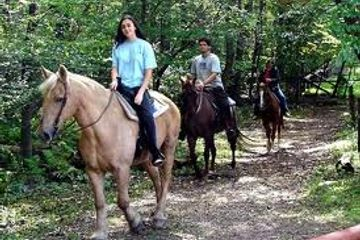 Horseback riding in the jungle