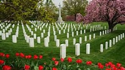 The cost of freedom as shown in Arlington National Cemetery