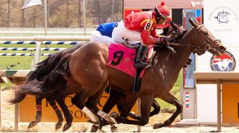 Gallanor wins Laurel Parks first MSW of the season for Jellico Farms and Phil Schoenthal