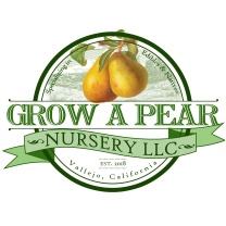 Grow a Pear Nursery