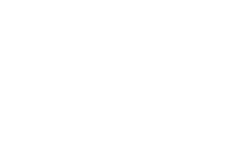 Lynch Partners