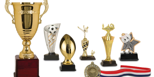 sports academics trophies resins plaques award trophy