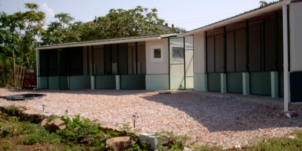 We have  purpose built accommodation for dogs.  Constructed to European standards for this type of