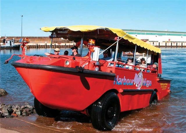 harbour hippo tours