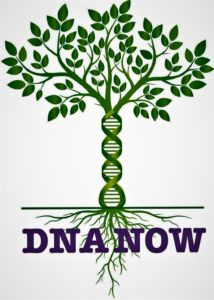 DNA Now Tree