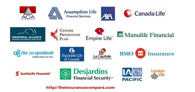 Best Car Insurance Companies In Canada ~ news word