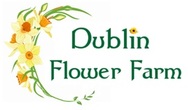 Dublin Flower Farm