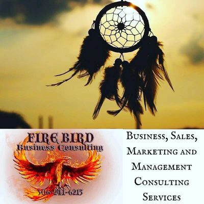 Firbird Business Consulting Ltd. services servicing Saskatoon, Regina, Saskatchewan, Canada