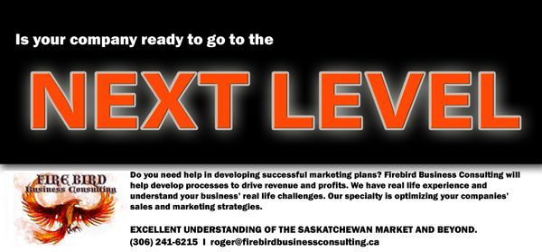 Next Level Business Firebird Business Consulting - Saskatoon - Regina - Saskatchewan - Canada