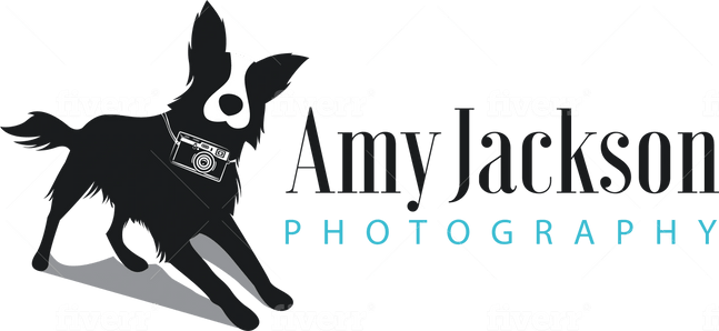 Amy Jackson Photography