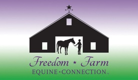 Freedom Farm Equine Connection