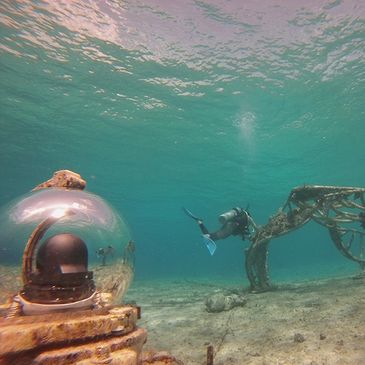 watch coral restoration research development, artificial reef progress,  art as coral refuge videos