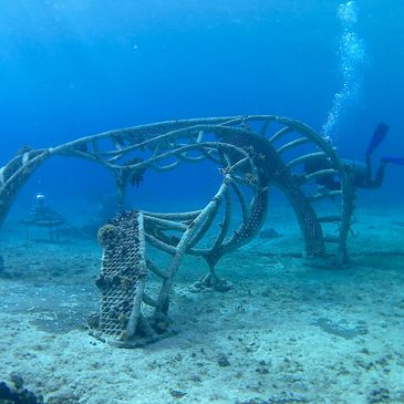 Coral restoration project | Zoe - A Living Sea Sculpture progress videos | Cozumel, Mexico