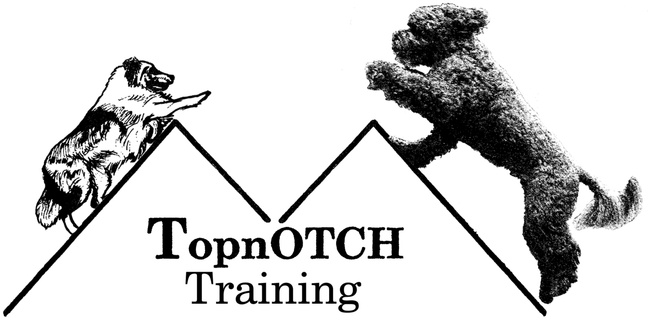 Topnotch K9training