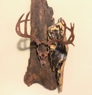 "Cut steel European style deer mount. Overall height 14"" tall"