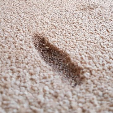 A deep burn in a beige carpet