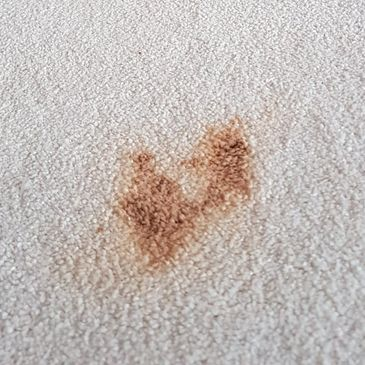A large dark brown stain in a beige carpet caused by spilled make-up