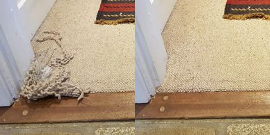 Click here for photos and information on our repairs to carpets damaged by pets