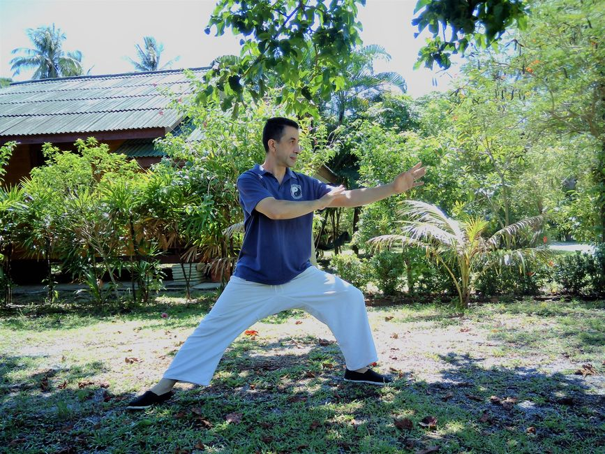 Tai Chi Training in Chiang Mai Thailand