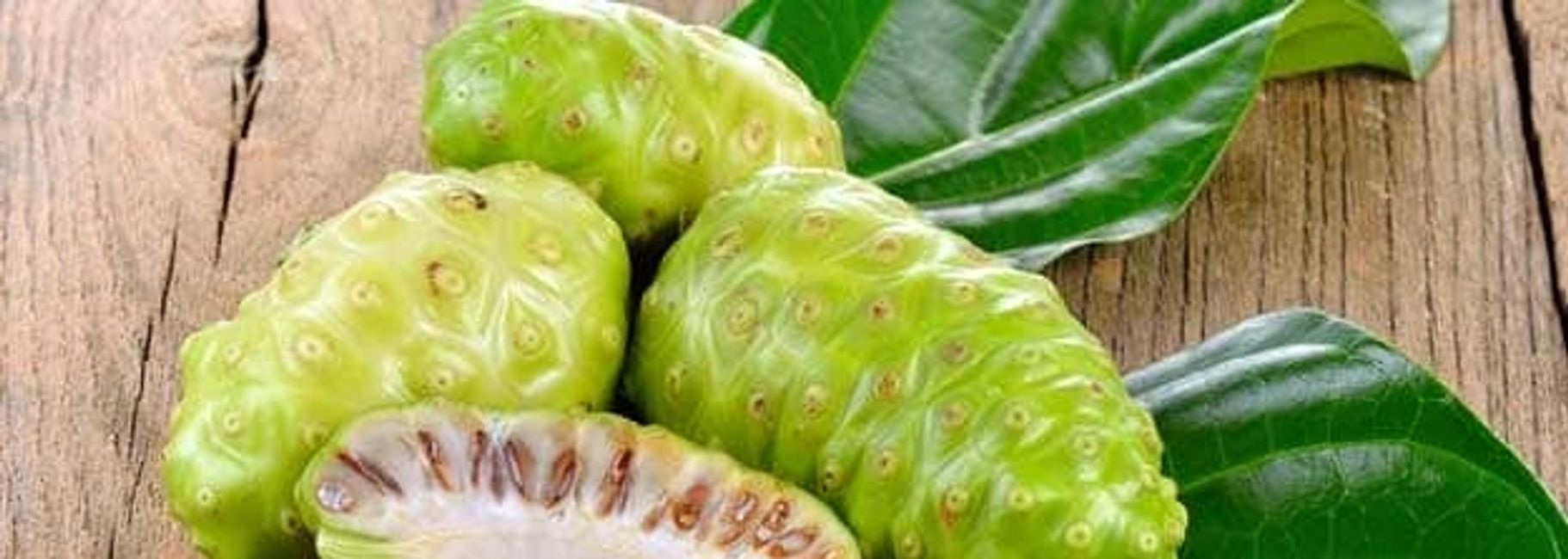 Organic Noni Juice in Chiang Mai Thailand.