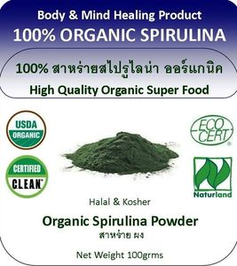 Body and Mind Healing Organic Spiruilna in Chiang Mai Thailand